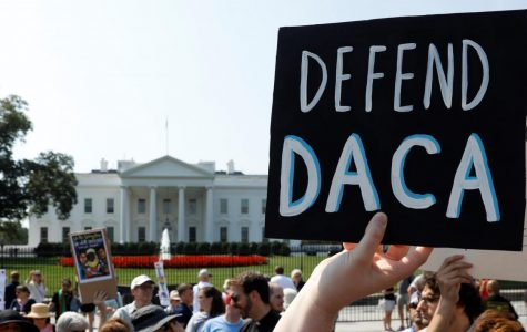 Trump on DACA