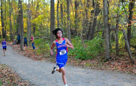The Resurgence of Cross Country